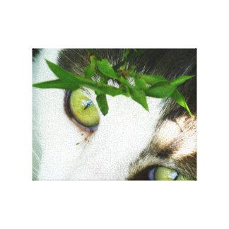Panda en color impresiones en lona estiradas