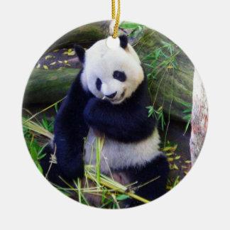 Panda en el parque zoológico de San Diego Adorno