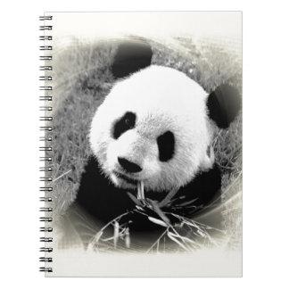 Panda Eyes Notebook