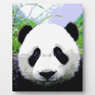 Panda Eyes Plaque