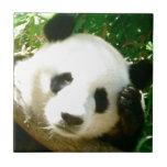 Panda Face Ceramic Tile