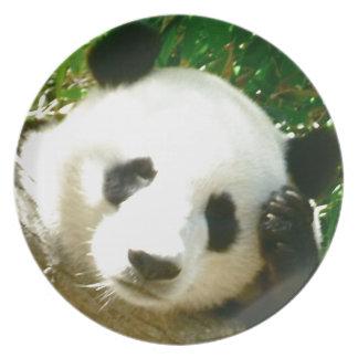 Panda Face Dinner Plate