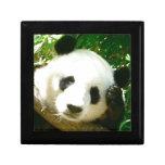 Panda Face Gift Boxes