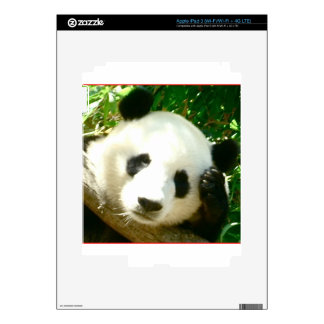 Panda Face iPad 3 Skins