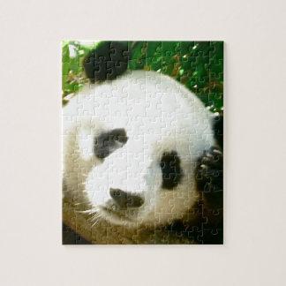 Panda Face Jigsaw Puzzle
