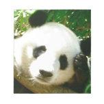 Panda Face Memo Notepads