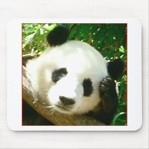 Panda Face Mouse Pad