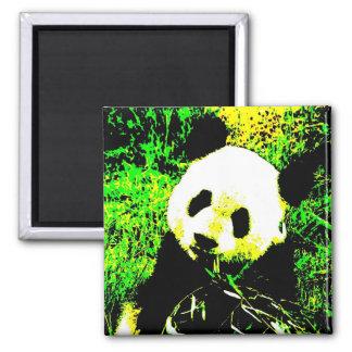 Panda Face Pop Art Magnets