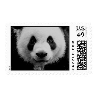 Panda Face Postage