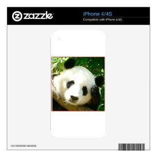 Panda Face iPhone 4 Decal