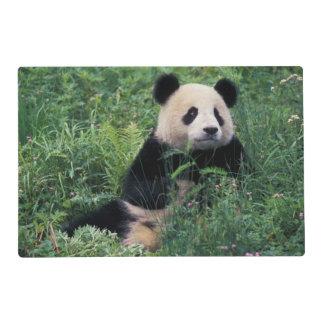 Panda gigante en la hierba, valle de Wolong, Tapete Individual