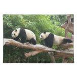 Panda gigante en una fotografía del parque manteles