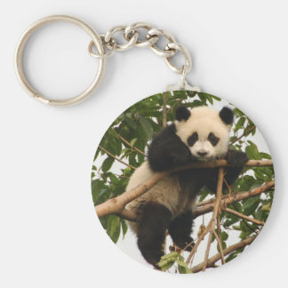Panda gigante joven llaveros personalizados