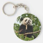 Panda gigante joven - llavero