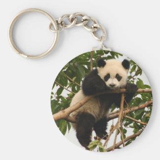 Panda gigante joven llavero redondo tipo pin
