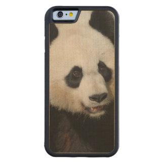 Panda gigante linda funda de iPhone 6 bumper arce