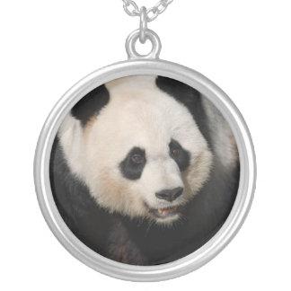 Panda gigante linda grimpola