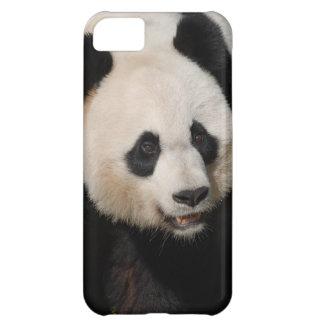Panda gigante linda