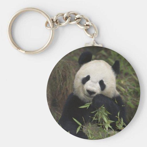 Panda gigante linda llavero redondo tipo pin