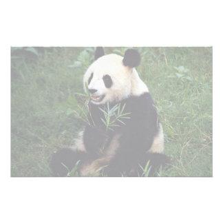 Panda gigante, provincia de Sichuan, China Papeleria Personalizada