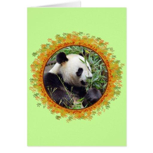 Panda gigante que come el bambú en marco tarjetas