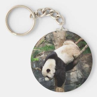 Panda gigante que sube abajo el árbol llavero redondo tipo pin