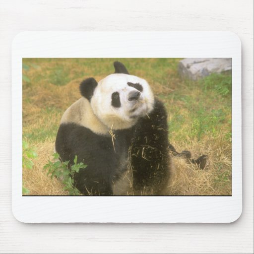 Panda gigante alfombrilla de raton