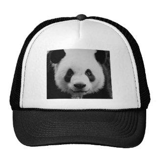 Panda Gorro