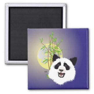 Panda grande imán (Ailuropoda melanoleuca)
