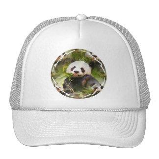 Panda Habitat  Baseball Hat