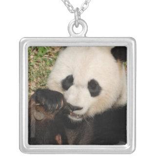 Panda hambrienta colgantes personalizados