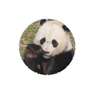Panda hambrienta frascos de caramelos