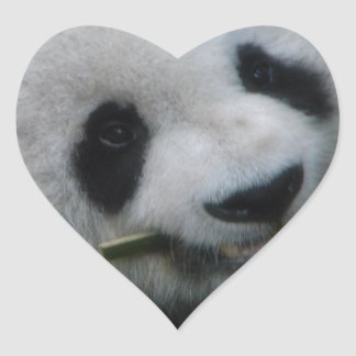 Panda Heart Sticker