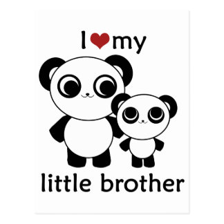 Panda - I love my little brother Post Card