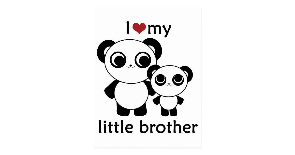 Panda I Love My Little Brother Postcard Zazzle Com
