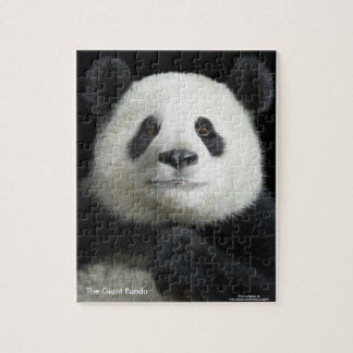 Panda image for Photo-Puzzle-with-Gift-Box Jigsaw Puzzle