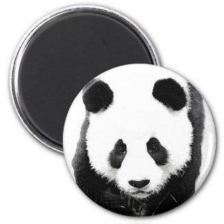 Panda Imán Redondo 5 Cm