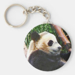 Panda in Tree Key Chains