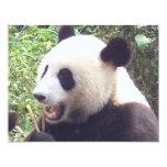 Panda Invitación 10,8 X 13,9 Cm