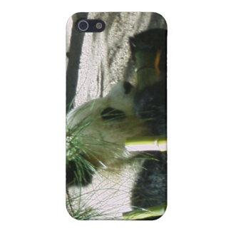 Panda iPhone 4 case