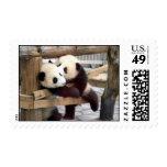 panda kiss postage
