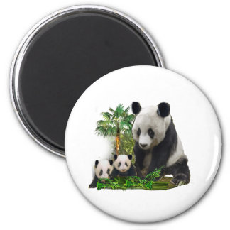 Panda Love art Magnet