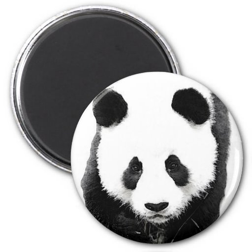 Panda Fridge Magnets