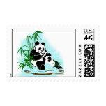 Panda Momma y bebé