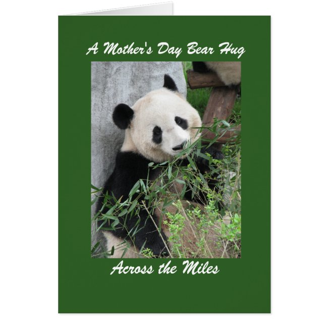 Panda Mother's Day Bear Hug Across the Miles Green