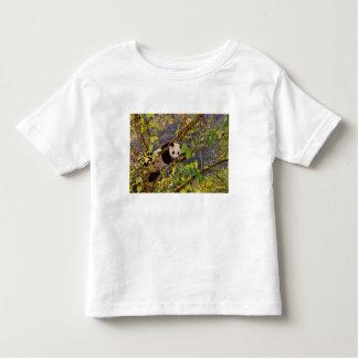 Panda on tree with autumn foliage, Wolong, T-shirt