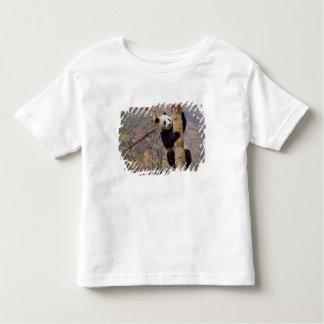 Panda on tree, Wolong, Sichuan, China Toddler T-shirt