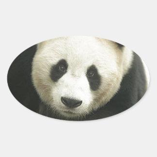 """Panda"" Oval Sticker"