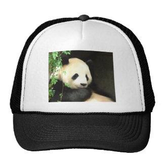 Panda Painting Hat