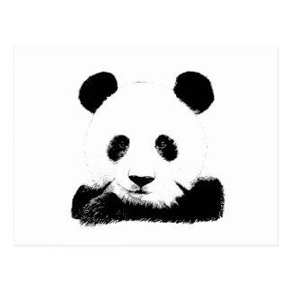 Panda Peeks Out Postcard